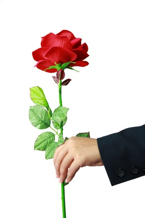 赤いバラを手に分離ホワイト バック グラウンド