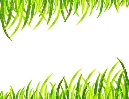 Grass frame in white background Stock Photo - 15352558