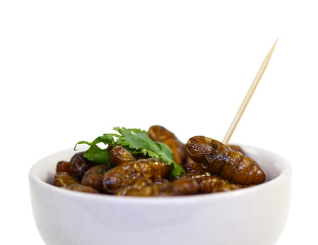mealworm: Fried insects.