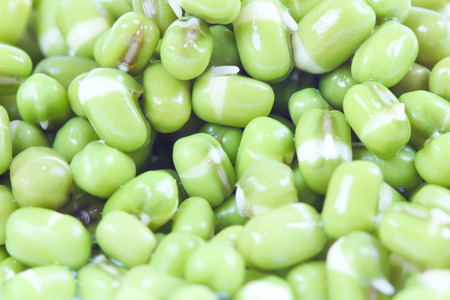 Close up of green beans Stock Photo