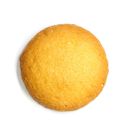 sponge biscuit on white background photo