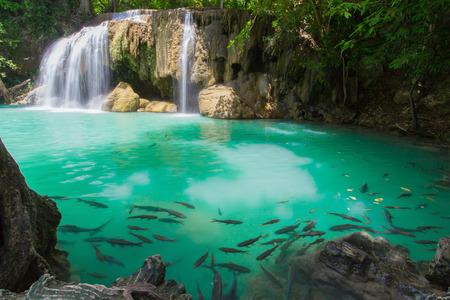 深い森でカーンチャナブリー、タイ エラワンの滝の国立公園の滝