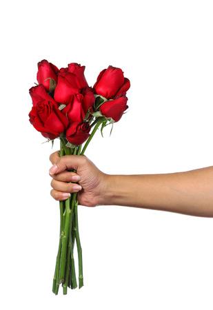白の隔離を赤いバラの花束を持っている手