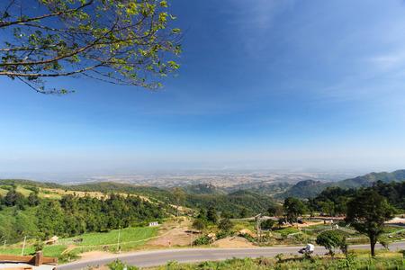 deforestacion: La deforestaci�n por humanos