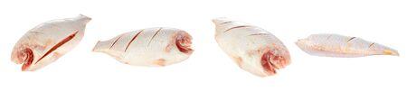 white nile: Nilo o la tilapia roja, Oreochromis niloticus, aislados en fondo blanco. Foto de archivo