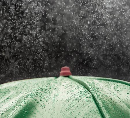 umbrella rain: umbrella and rain drops closeup