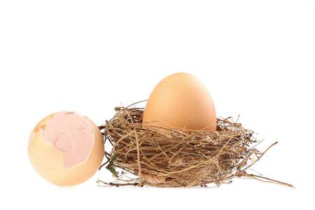 huevo blanco: Huevo, huevo de gallina aislante en blanco