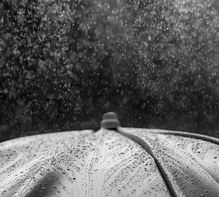 april: Umbrella under raindrops in black and white