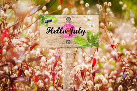 red grass: Happy July signpost in beautiful and white flora  red grass in the garden Stock Photo