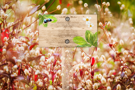 red grass: signpost in beautiful and white flora  red grass in the garden Stock Photo