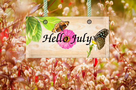 red grass: Hello  July signpost in beautiful and white flora  red grass in the garden Stock Photo