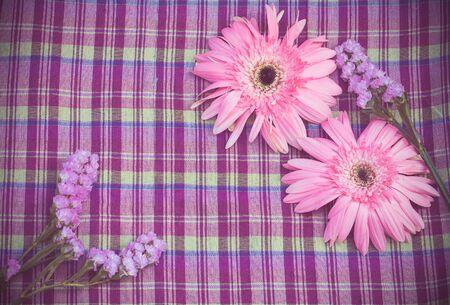 violate: vintage of pink gerbera flower on violate cloth Stock Photo