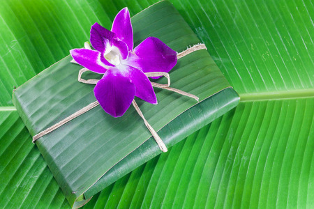 violate: violate orchid on green banana leaf Stock Photo