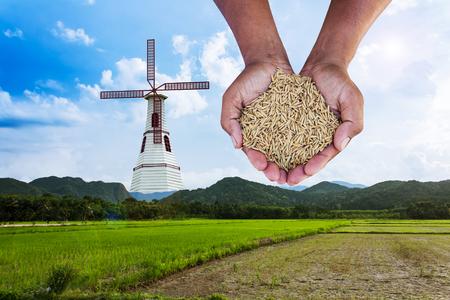 ingenieria industrial: bodega de arroz mano en la turbina de viento en el campo de arroz verde por la mañana, el concepto renovable salvar al mundo