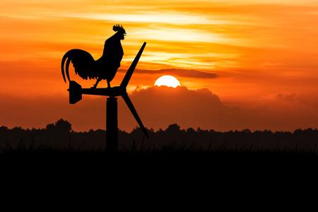 aves de corral: silueta de gallos cantan de pie en una turbina de viento. En el fondo de la salida del sol de la mañana Foto de archivo