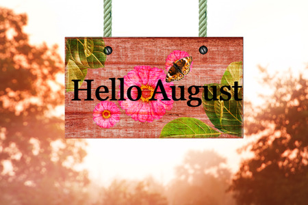 beautiful woodland: hello August signpost in beautiful woodland with vintage forest filter
