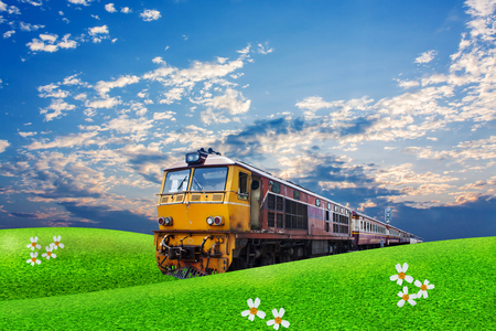 commercial tree service: train passes through green field on the blue sky  background