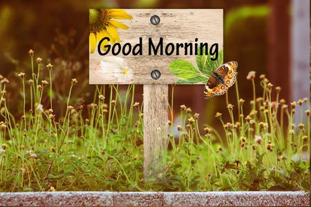 Bon indicateur du matin dans une belle forêt avec vintage filtre pré floral Banque d'images - 43545661