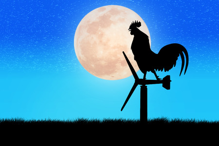 crow: Roosters crow stand on a wind turbine. In the morning sunrise background Stock Photo