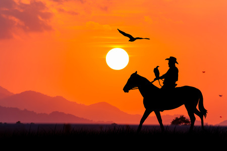 horses in field: silhouette of Cowboy sitting on his horse at  sunset background Stock Photo
