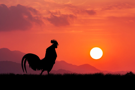 Roosters crow stand on a wind turbine. In the morning sunrise background Archivio Fotografico