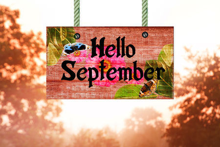 hello September signpost in beautiful woodland with vintage forest filter