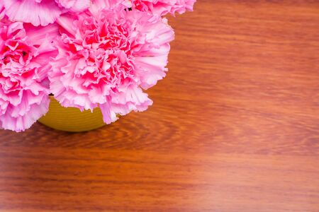 violate: pink carnation floral on ion violate cloth background Stock Photo