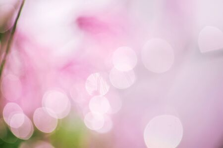 bokeh blurry natural abstract  background Stock Photo