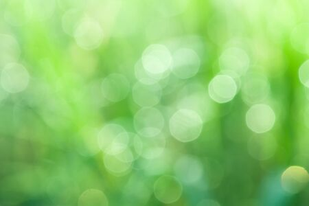 bokeh blurry natural abstract  background 版權商用圖片