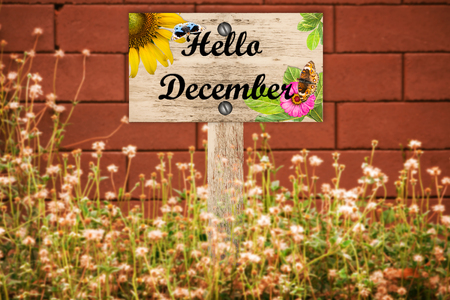 beautiful woodland: hello December signpost in beautiful woodland with vintage floral meadow filter