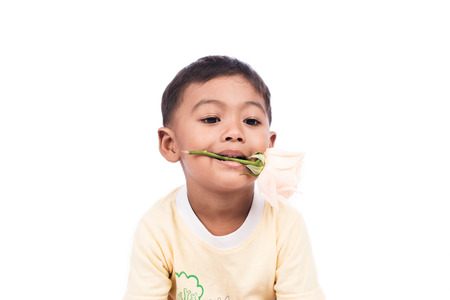 young boy smiling: portrait of cute little boy with white rose Stock Photo