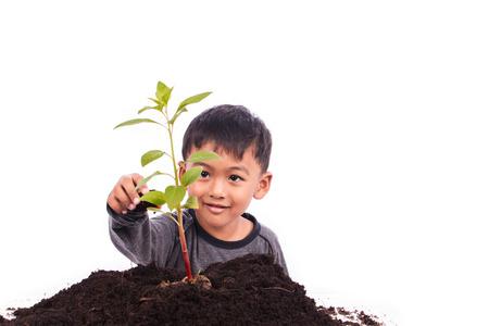 Cute little boy planting tree