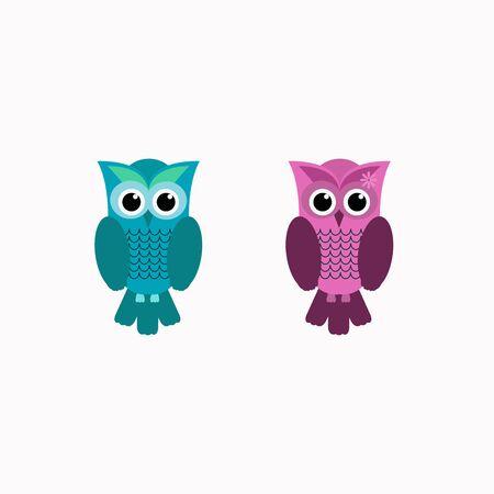 Animal bird,couple owl bird vector