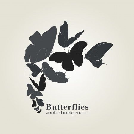 ly: Beautiful butterfly