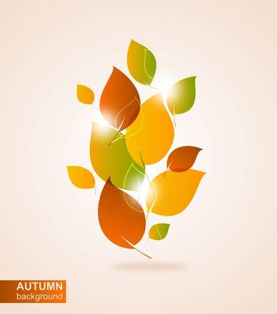 Autumn leaves Stock Vector - 15230348
