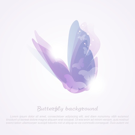 purple butterfly: Abstract butterfly_Vector background  Illustration