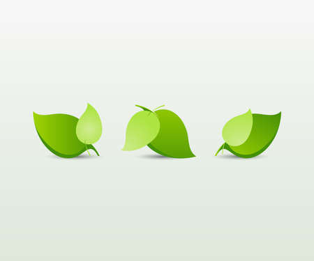 Set of abstract green leaves_elements for design   Vector