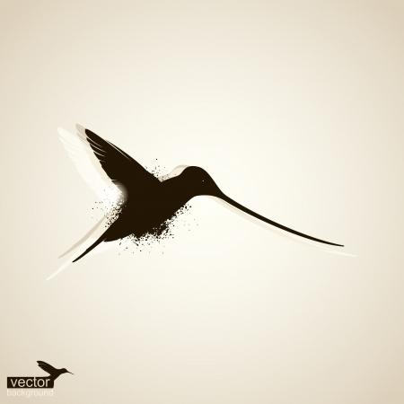 humming: Hummingbirds  Abstract  illustration