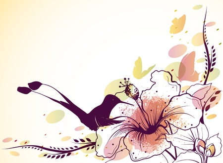 Vector background with flowers, hummingbird and butterflies   Vector