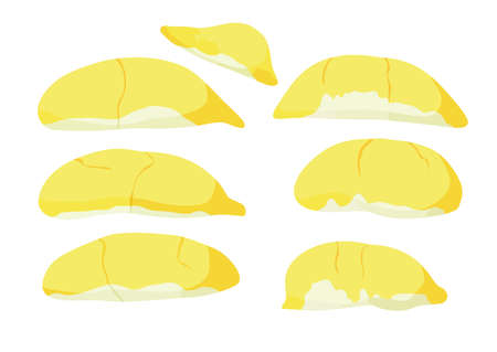 durian fruit colour yellow and ripe durian piece on white background illustration vector