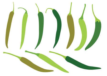green chilli on white background illustration vector