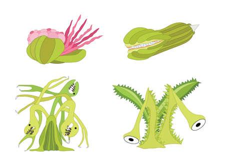 Carnivorous plants design green on white background illustration vector 矢量图像