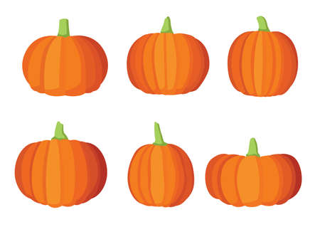 Pumpkin fruit and halloween design on white background illustration vector Illusztráció