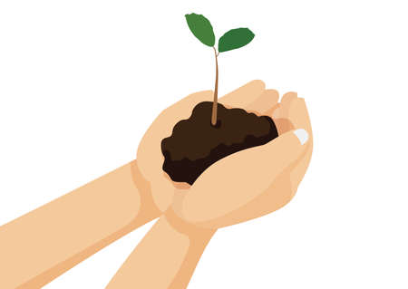 tree and soil in human hand on white background illustration vector