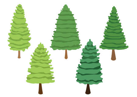 tree pine set collection isolated on white background illustration vector