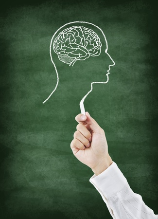 head wise: Brain drawing on greenboard with chalk Stock Photo