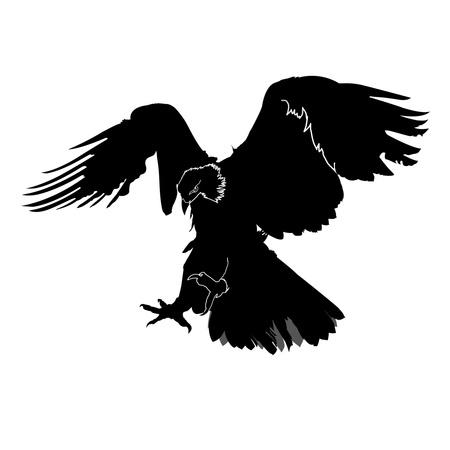 siluetas: eagle silhouette