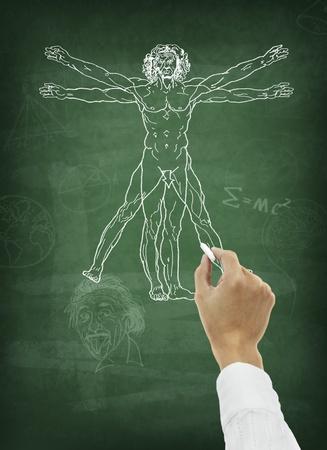 uomo vitruviano: Mano disegno anatomia umana sulla lavagna Archivio Fotografico