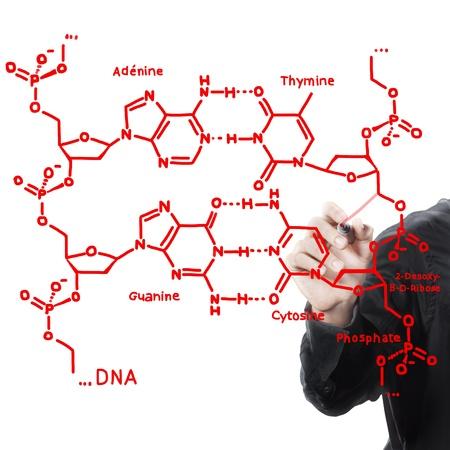 equation: Hand writing maths formula ,DNA structure