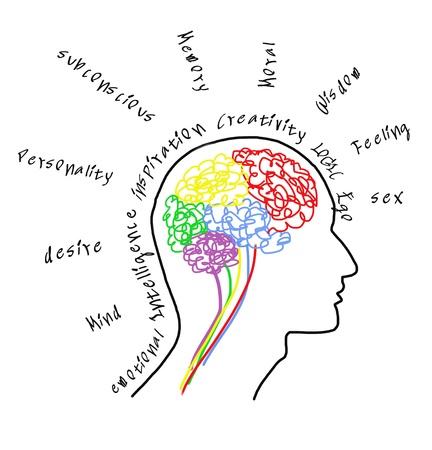 zenuwcel: Brain tekening met tekst